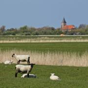 Landschaft |Eiderstedter Schutzengel